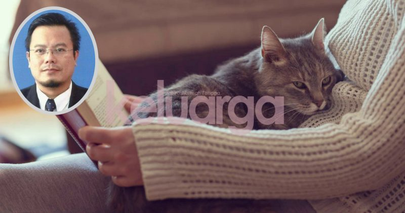 Parasit Kucing Bahayakan Ibu Hamil Tak Salah Bela Kucing Tapi Kena Hati Hati Dr Zubaidi Keluarga