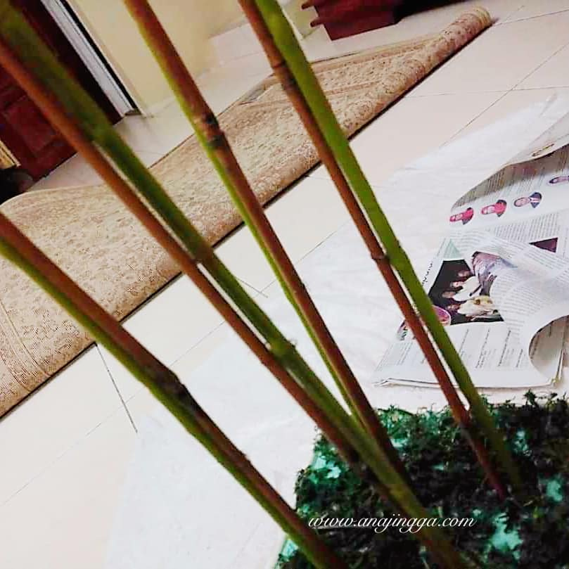 Gubah Bunga Orkid Tak Susah Mana Pun Ni Step Nak Buatnya Sendiri Boleh Jimat Ratusan Ringgit Keluarga